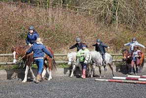 Finlake Riding Centre